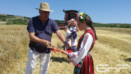 Николай Киров, председател на Съюза на зърнопроизводителите - Бургас