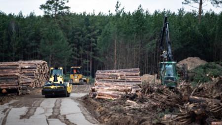 Разчистване на горски терен за гигафабриката на