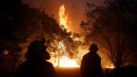 Пожарите в Австралия отмениха последния кръг от рали шампионата.