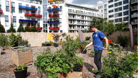 Градско земеделие в Германия