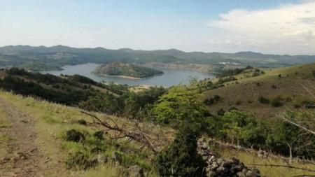 Природозащитници се борят за възстановяване на популацията на елени в Източните Родопи