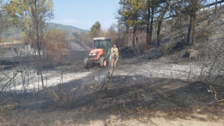 Пожар на подбалканския път София -Бургас, в района на село Ветрен