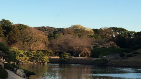 Хармония и покой по японски