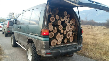 Задържани са и колите, с които е превозвана незаконно добитата дървесина