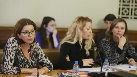 """Временната анкетна комисия на парламента за спирането на излъчването на """"Хоризонт"""" изслушва представители на СЕМ и на КРС."""