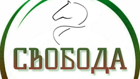 Лого на политическа партия