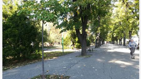 Крайдунавският парк