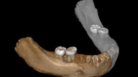 Част от долна челюст е открита в тибетска пещера през 1980 г.