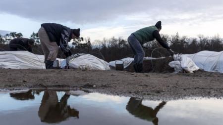 Сезонни работници на нива с аспержи в Германия.