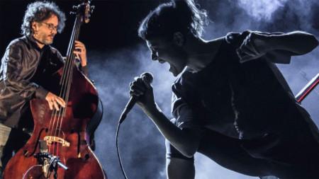 Двамата от Musica Nuda са талантливи и атрактивни