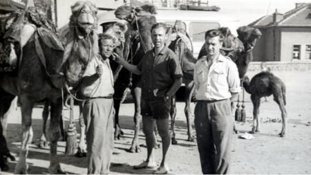 Sembolik bir Topolovgrad fotoğrafı- Marko Karpuzanov ve develeri.