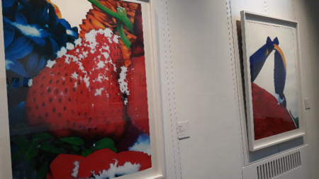 Две от картините в изложбата