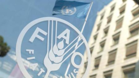 Организацията по храните и земеделието на ООН (FAO)