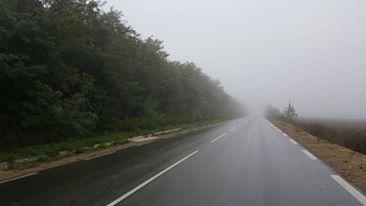 мъгла, мъгливо време