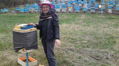 Стела сред пчелина в Старопатица