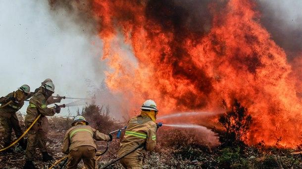 Португалски пожарникари се борят с огъня, който взе десетки жертви, като обхвана значителни територии в централната част на страната