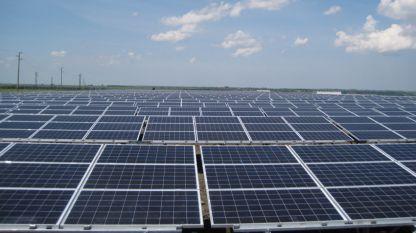 Фотоволтаичните паркове се възползваха от слънчевото време тази зима, но са обвинявани за високите цени на тока...