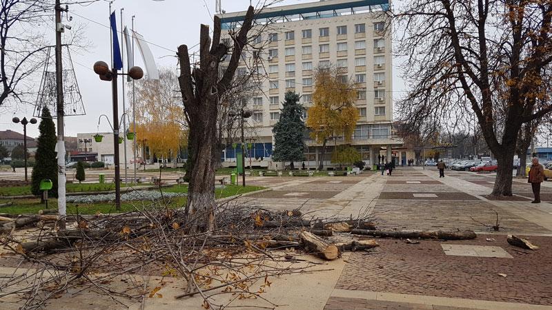 Снимка: Община Мездра