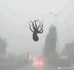 Бурята в Китай донесе деликатеси