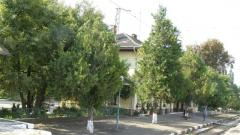 Гарата край Димово, близо до която е бил и домът на Павел Кудинов
