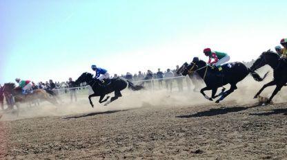 Конни надбягвания в русенското село Сандрово