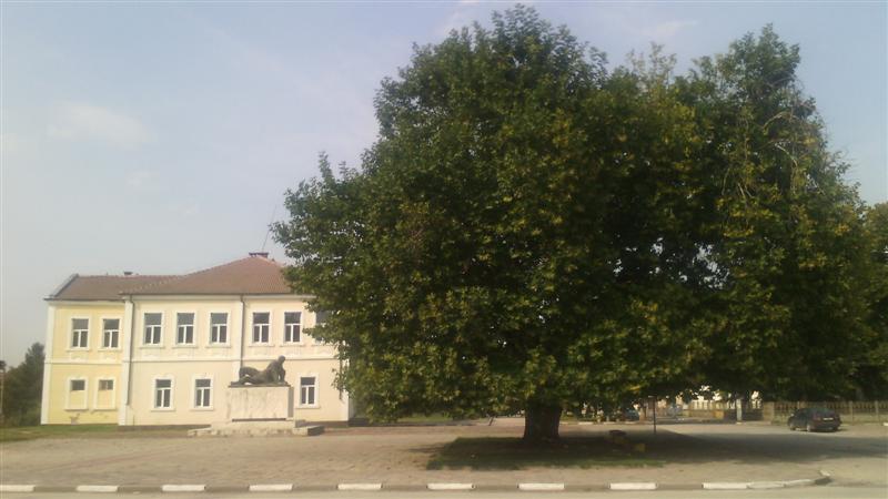 Снимка: Мирослав Людмилов