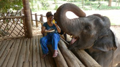 Магдалена Гигова в сиропиталището за слонове в Пиннавала, Шри Ланка.