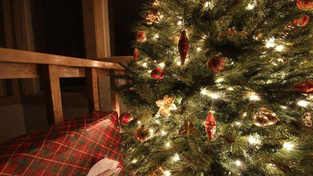 Christmas Trees Symbolism And Rituals Folklore