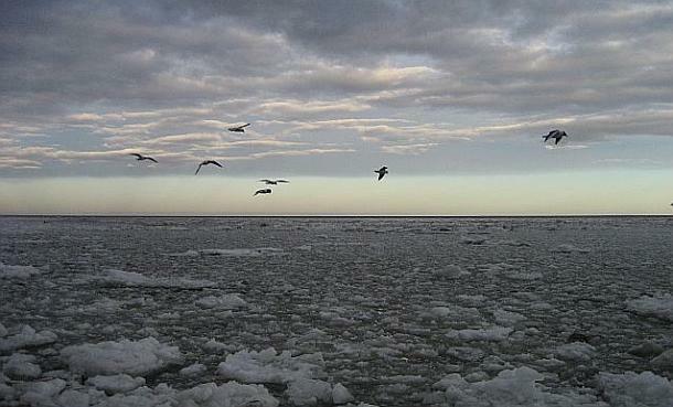 Баренцово море крие останките на руска атомна подводница.