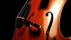 cello виолончело 610