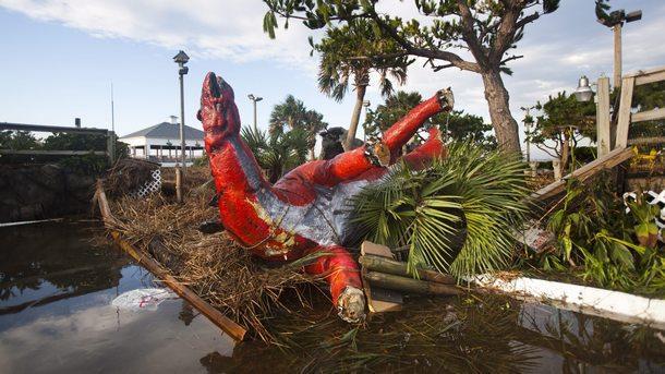 Броят на жертвите от урагана Майкъл в САЩ достигна 16