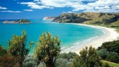 New_Zealand_Nature_1