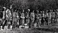 Четници от ВМОРО, Илинденско-Преображенското въстание