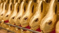 Шоколадов заек