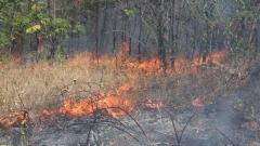 Причината за пожара е небрежност при боравене с открит огън.