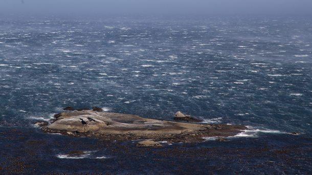 Американски учител прекоси с гребане Атлантическия океан за рекордно време.