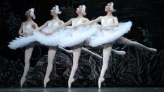 Танцът на малките лебеди от