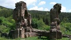 Развалините на Еленската базилика от IV век в близост до село Антон.