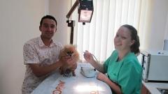 видин куче ветеринар клиника домашен любимец