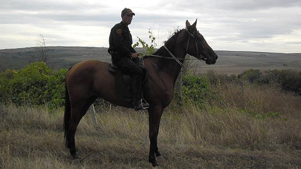 Конна охрана по време на гроздобера в Ново село